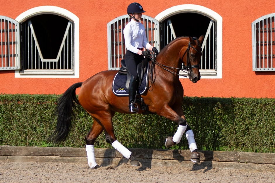 Lätta skor kan underlätta för rörliga hästar