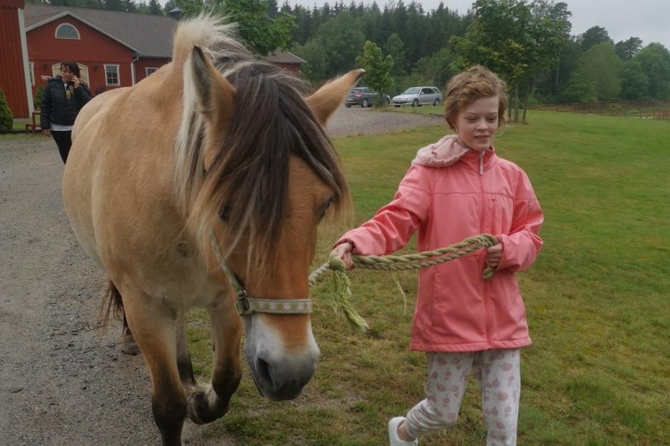 Insamling räddade häst åt cancersjuka 13-åringen