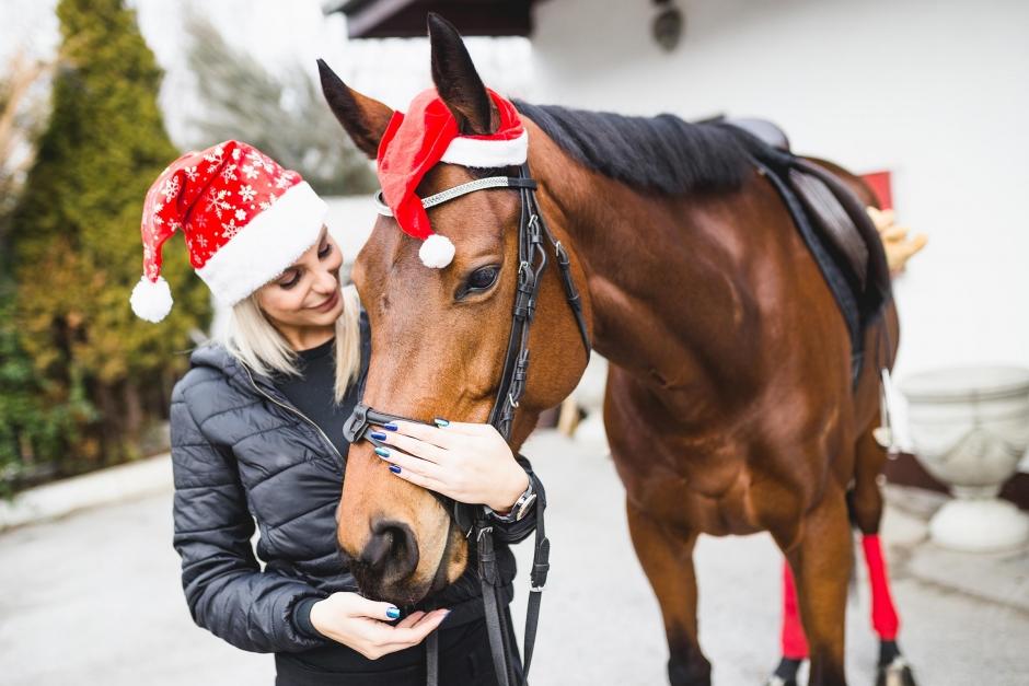 """""""Hästar är en Guds gåva till mänskligheten"""""""