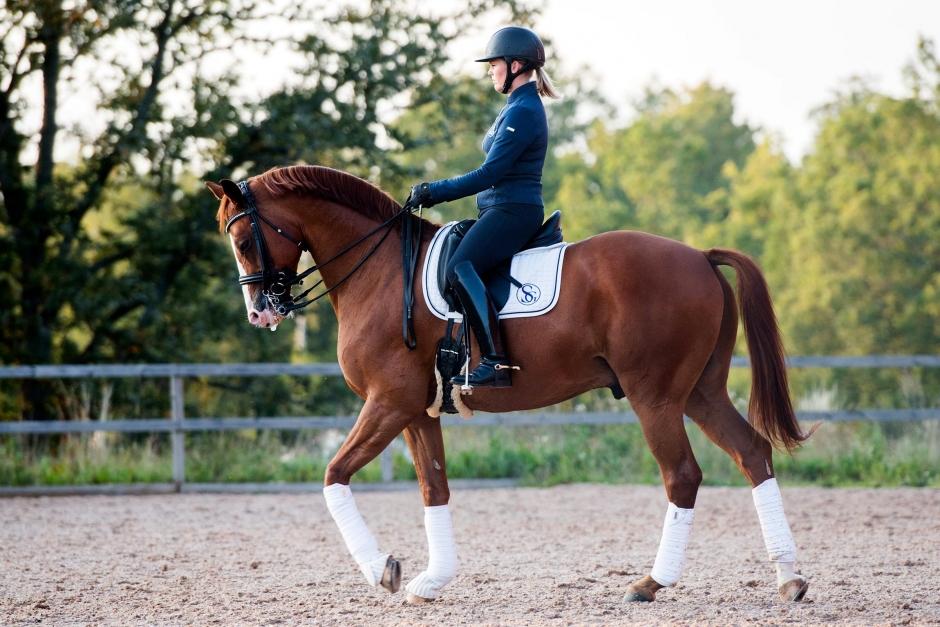 Problemlösning: Lyhörd häst kräver aktiv ryttare