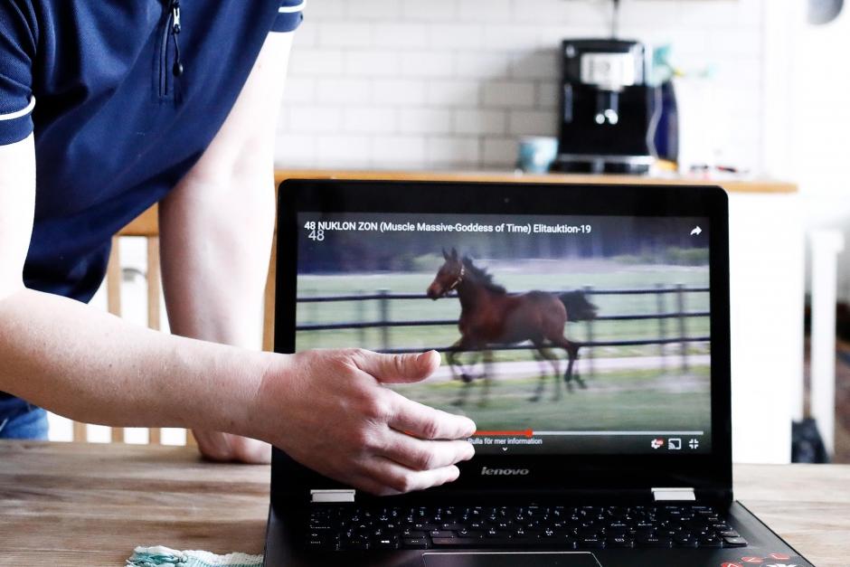 Hästannonsering: Rörliga bilder säljer bäst
