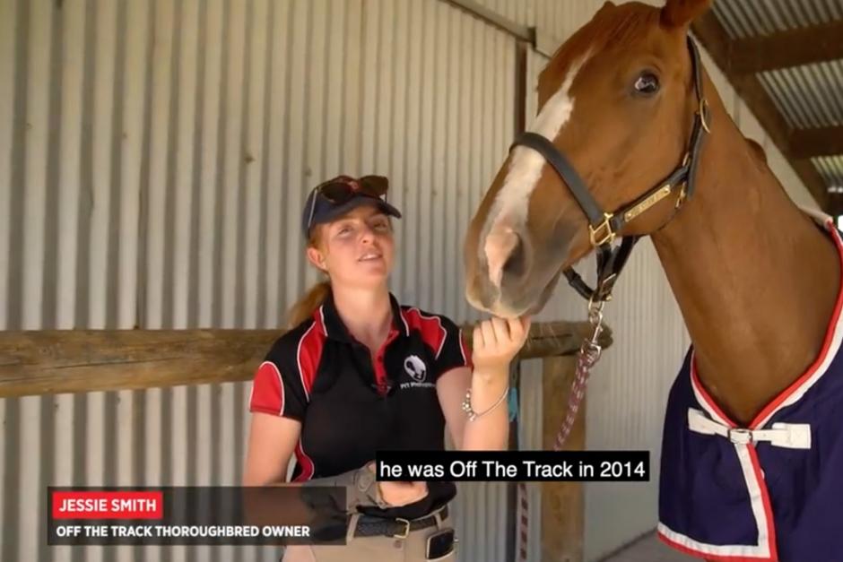 Hästen Kiwi överlevde mirakulöst lågorna