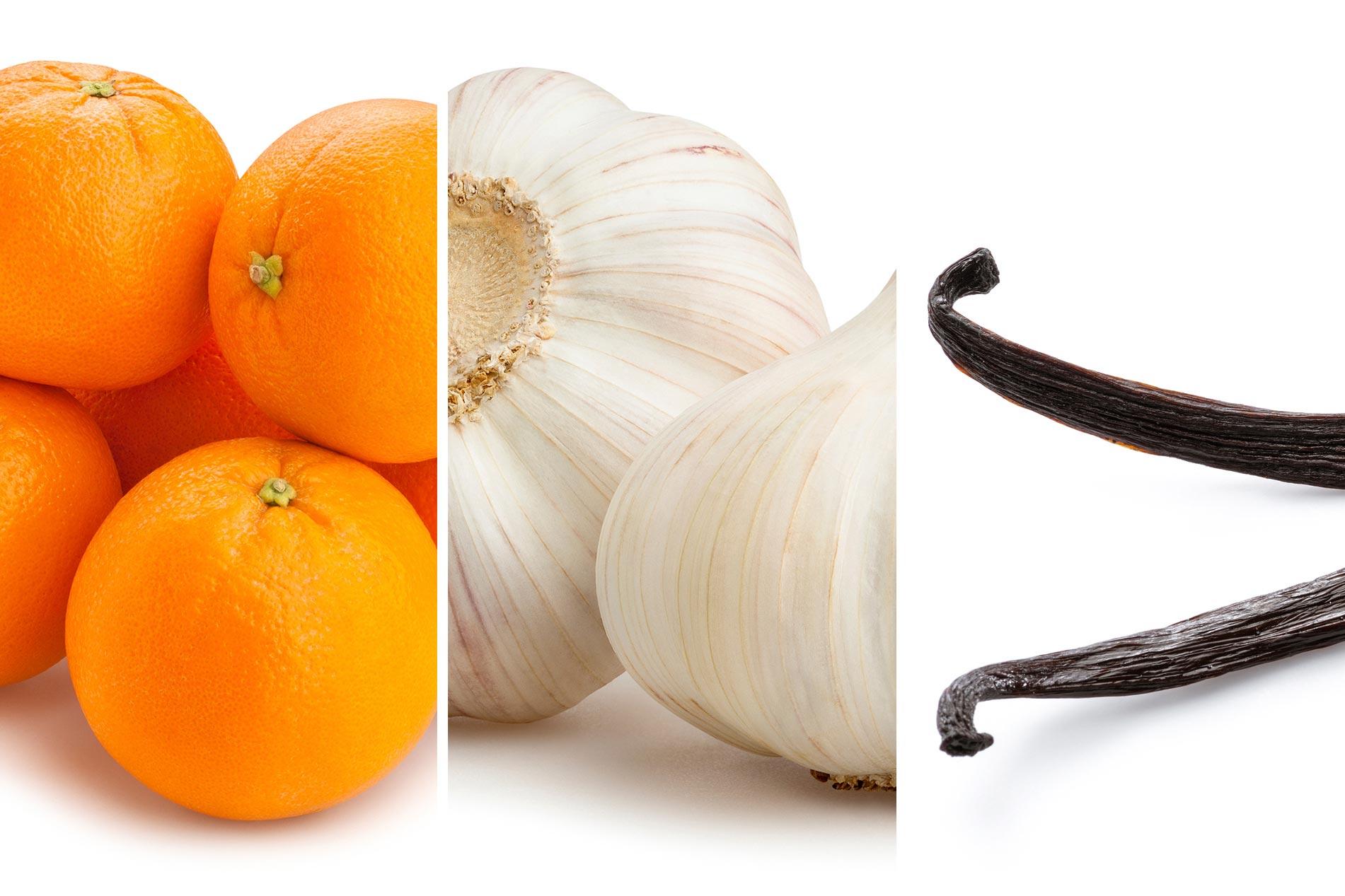 Apelsinvitlokvanilj