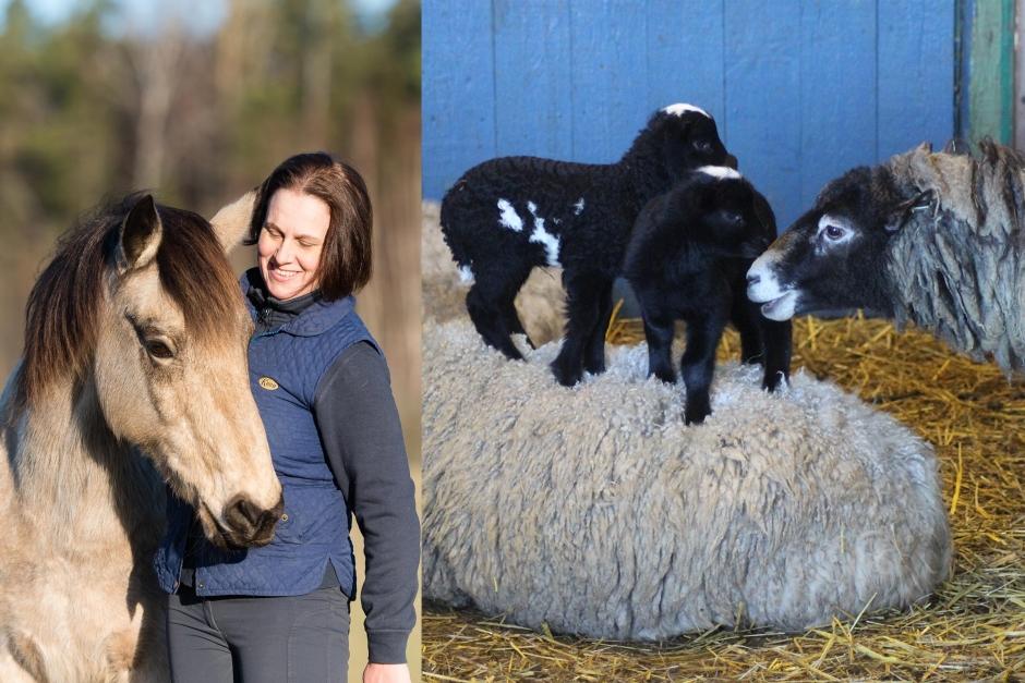 """Johannas blogg: """"Födslar och dödslar ligger så nära varandra"""""""