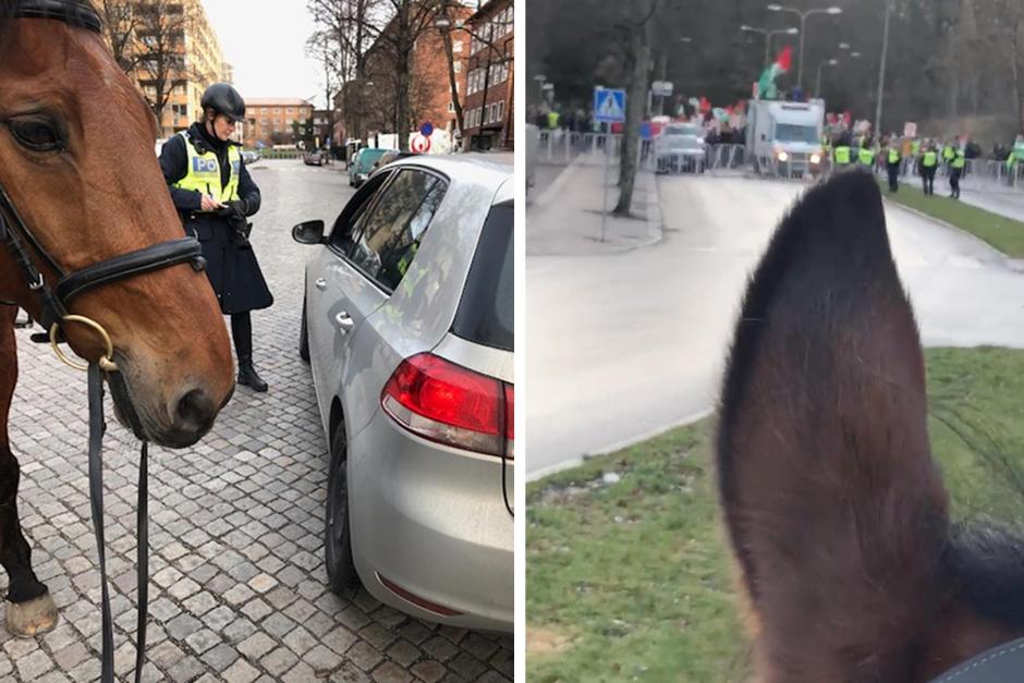 """Ridande polisen: """"Det är helt gratis att följa trafikreglerna"""""""