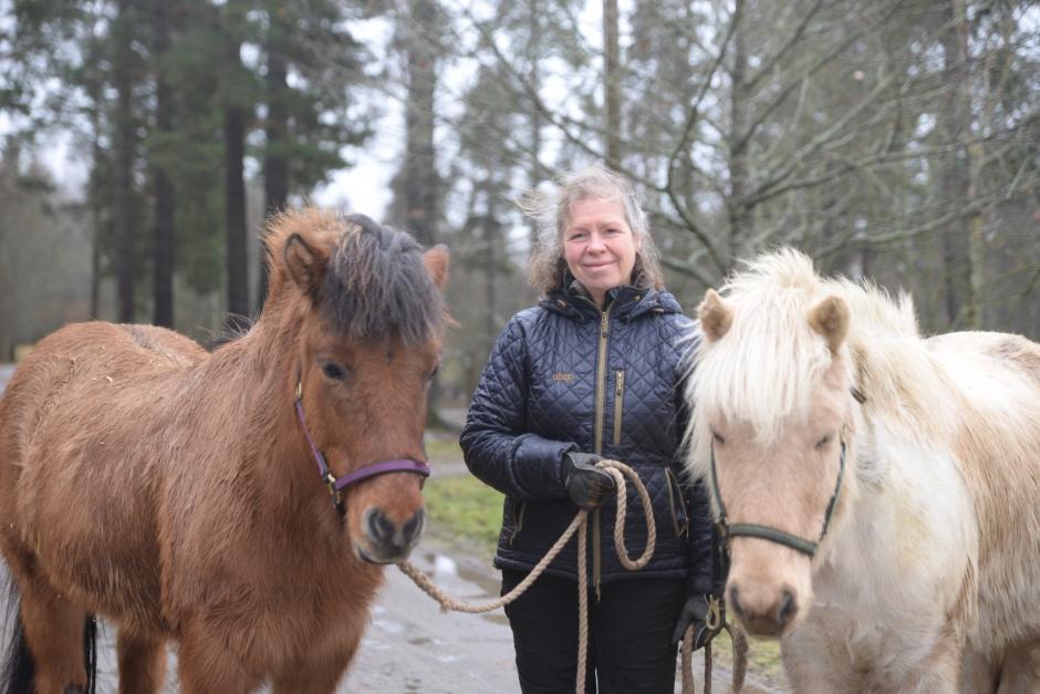 """Hästföretagarens utmaning: """"Att ta och få rimligt betalt"""""""