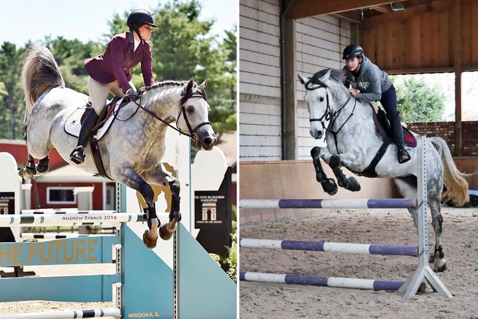 Här finns den riktiga Catoum – och hästen på bilderna