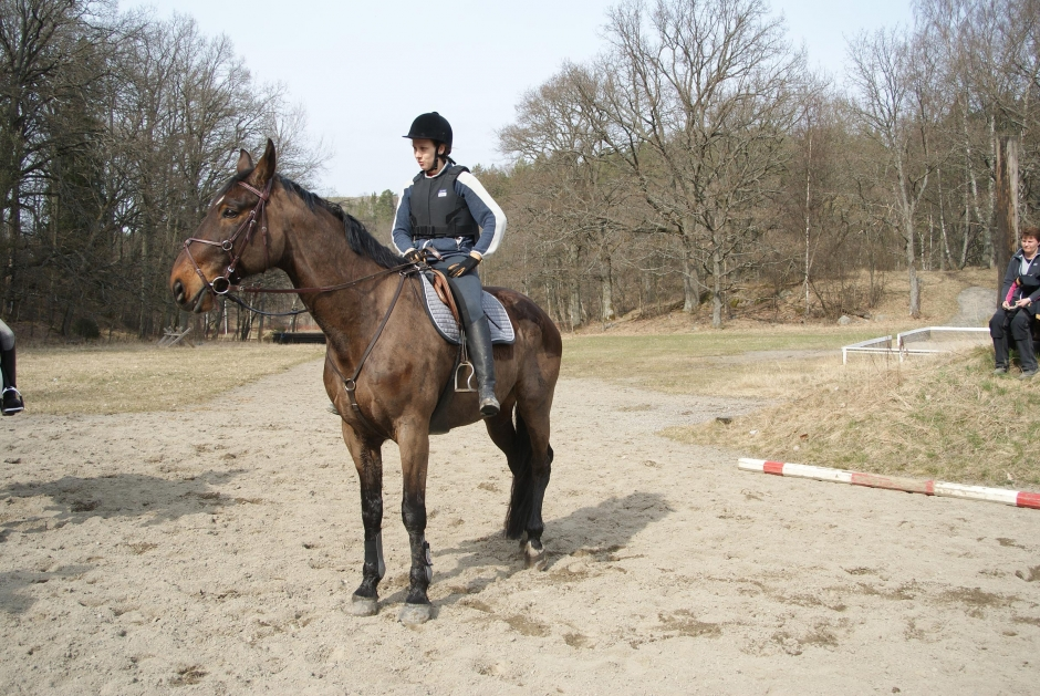 """Johannas blogg: """"Sura ston och heta hästar har varit mina favoriter"""""""