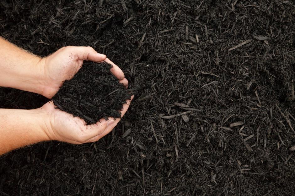 Ny trend i USA: Kompostera hästkroppar