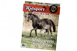 Ridsport nr 5 – Avelsextra