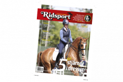 Ridsport nr 6