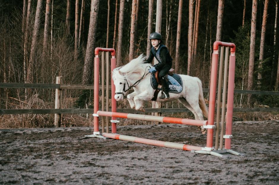 Ponnypappan: Kan hästar och humor vara läkande?