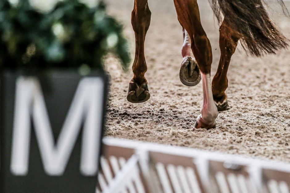 Intensiv vecka för ponnyer när SM flyttas