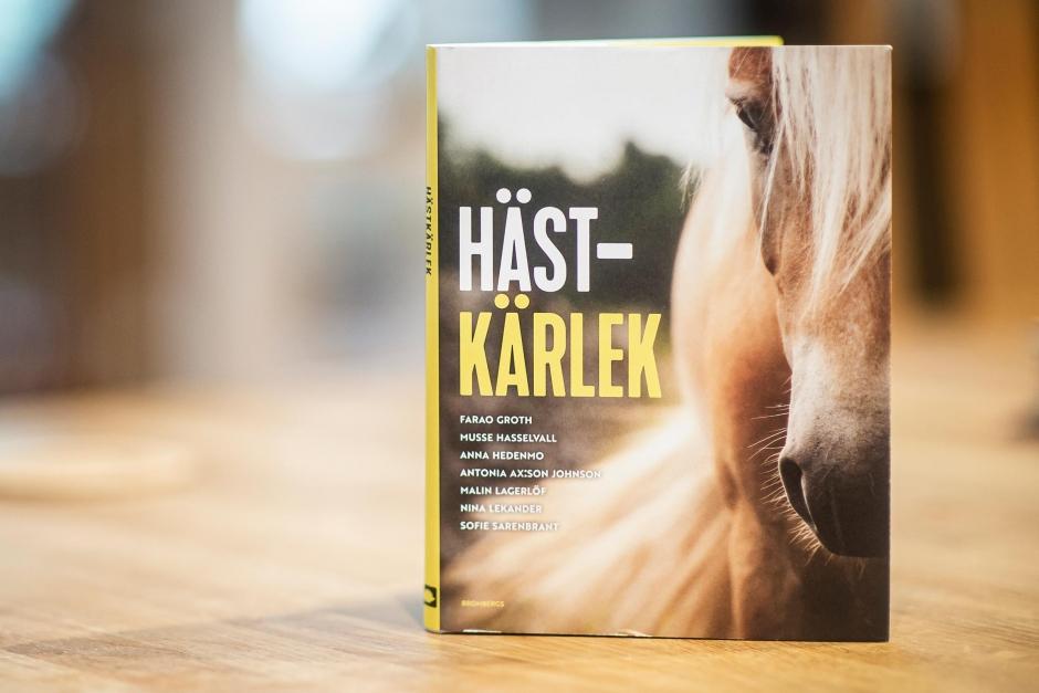 Mysig bok om kärleken till hästar