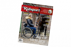 Ridsport nr 7