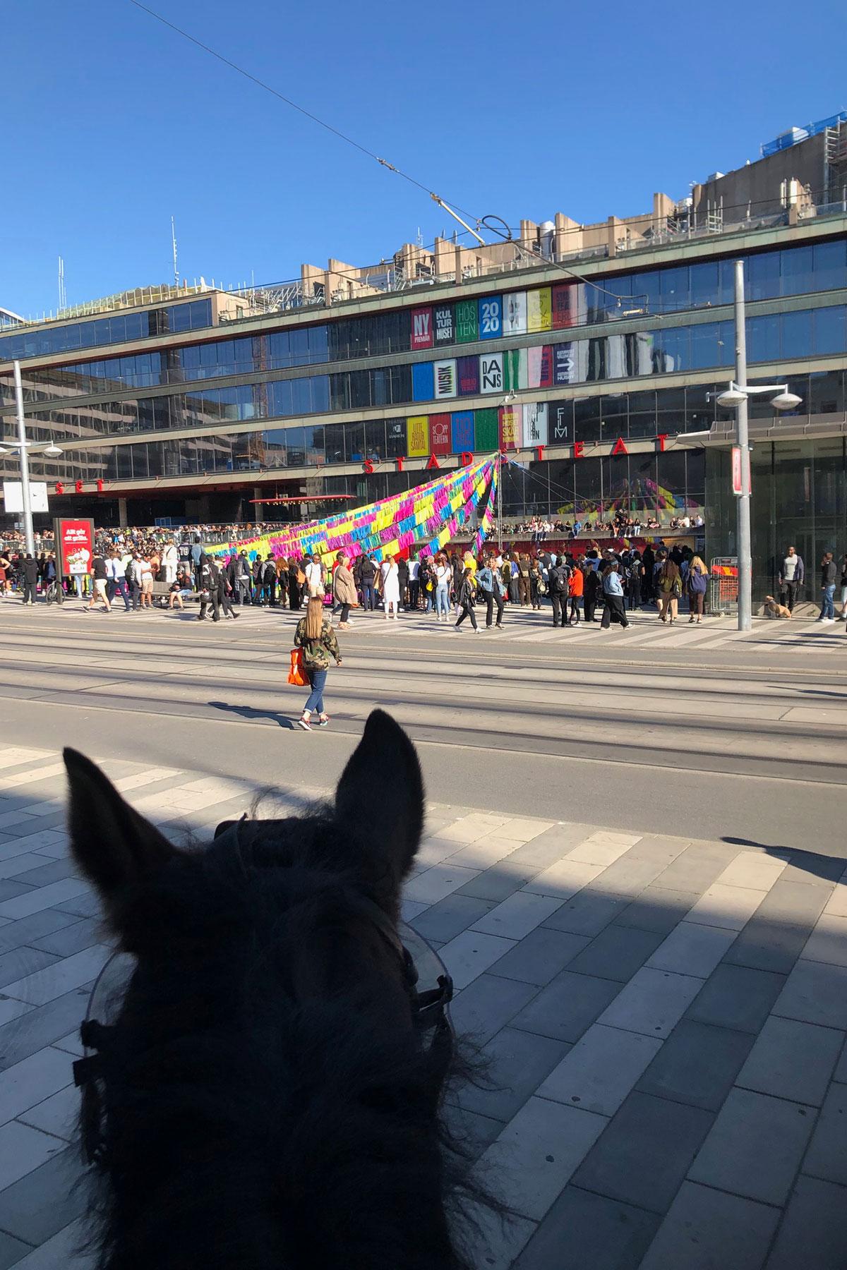 Polisbloggen_sergelstorg