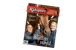 Ridsport nummer 10