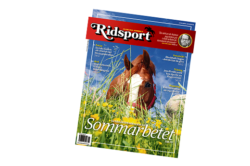 Ridsport nummer 11