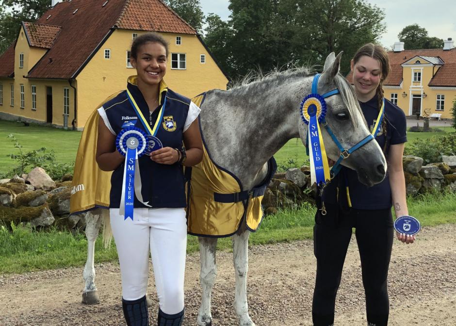 Rutinerade svenska mästare – så reds loppen