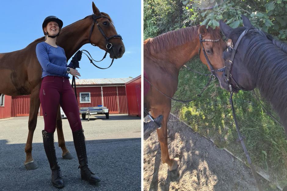 """Sofie Relander: """"Våga gasa på och släpp handbromsen"""""""