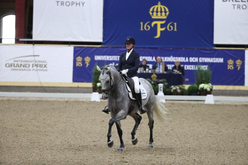 """SWB Equestrian Weeks satsar på """"plantskola för SWB-hästar"""""""