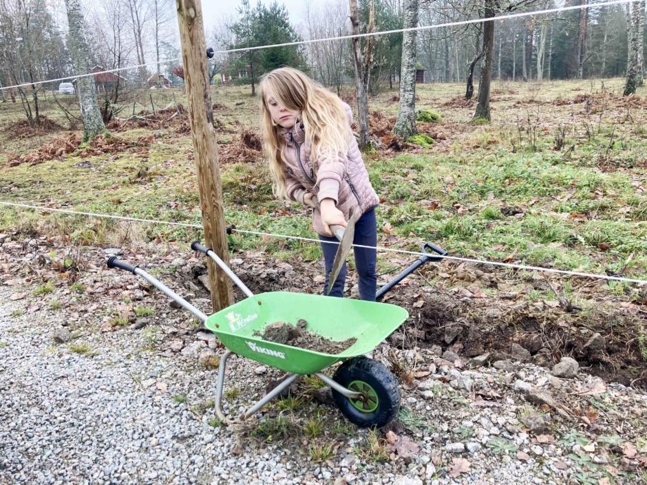 Projekt – när inget annat hjälper