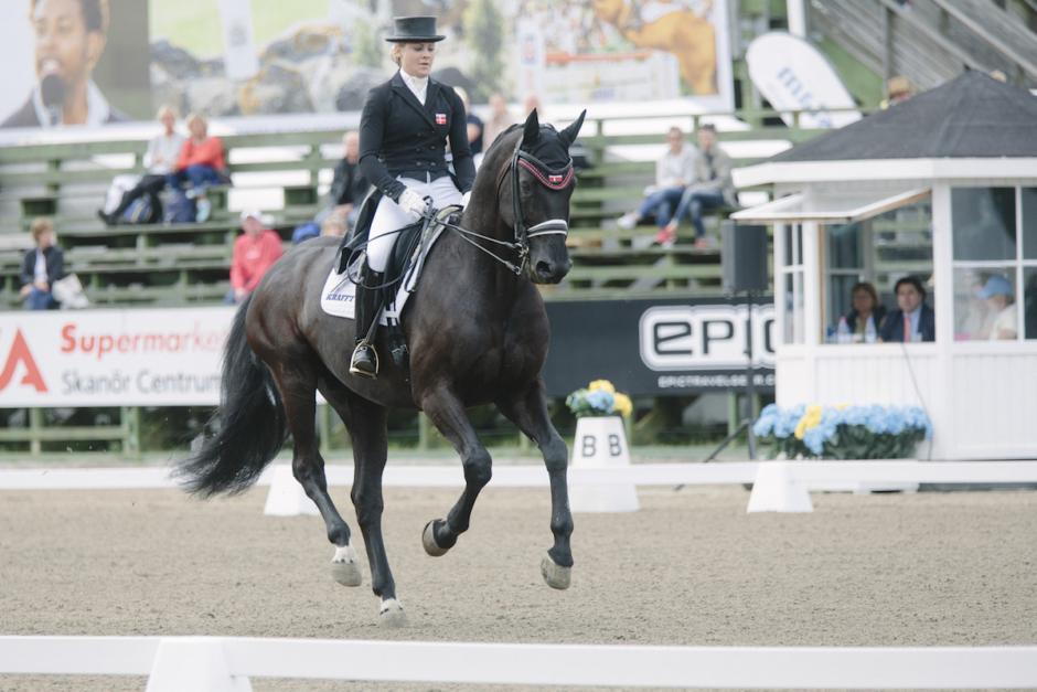 Mästerskapshäst till svenska dressyrsystrar