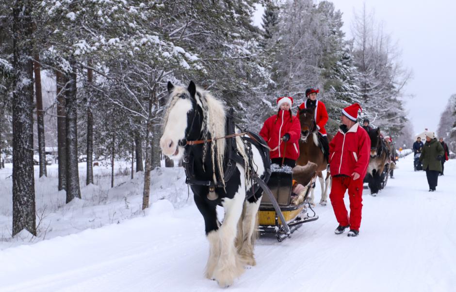 Hästar och slädar spred julstämning