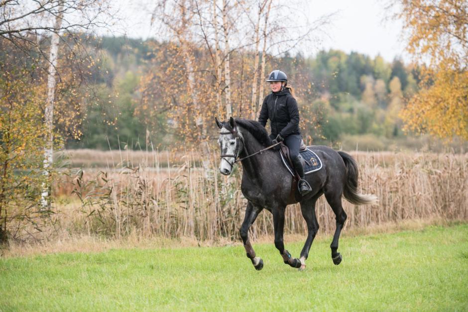 "Kristinas blogg: ""Att springa maraton gav mig nya insikter i sadeln"""
