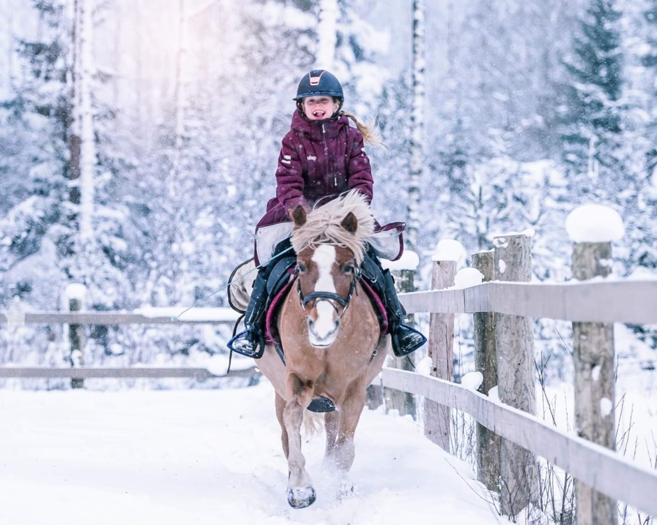 "Ponnypappan: ""Hej, mitt vinterland!"""