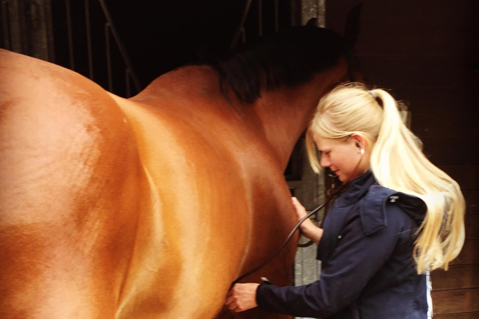 Ambulerande veterinär med hjärtat på rätta stället