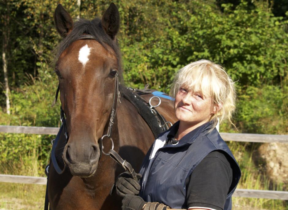 Ökat missnöje med hästbesiktning bakom anmälningar