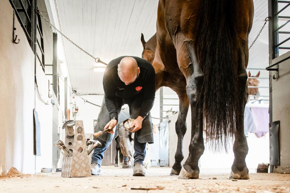 Så blir din häst trygg med hovslagaren