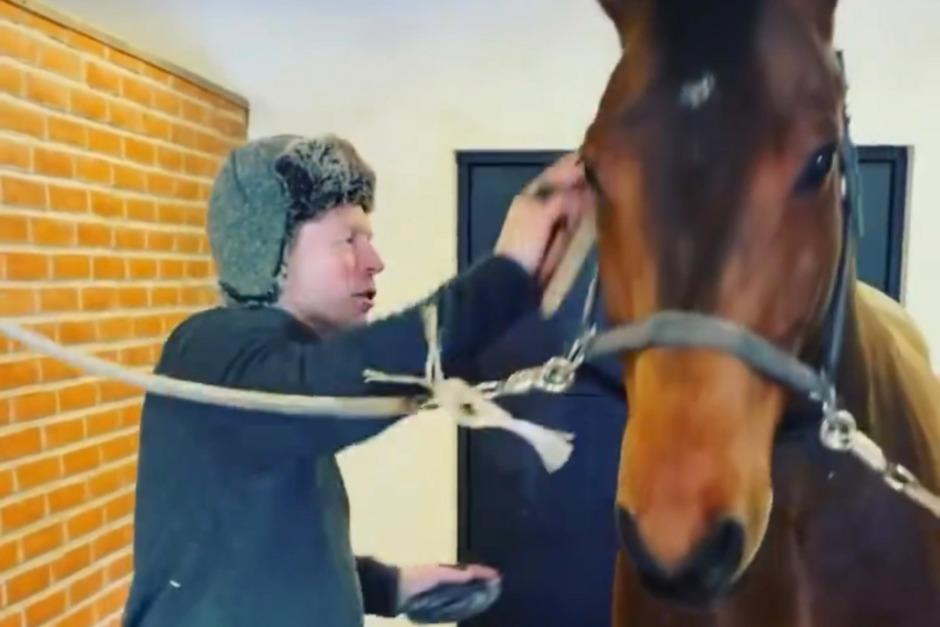 """Kolla klippet: Jens Fredricson nattar hästarna med """"en ordentlig rykt"""""""