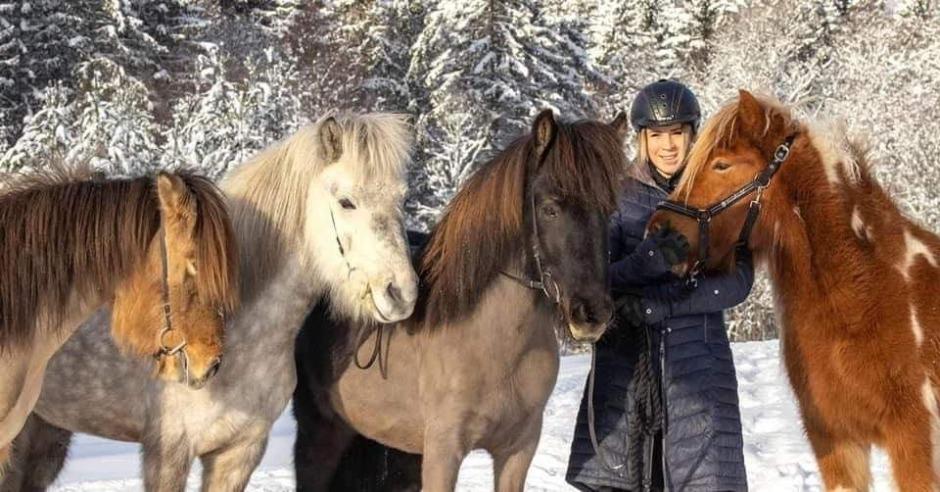 Sex hästar försvann ur hagen – hittades efter sökinsats