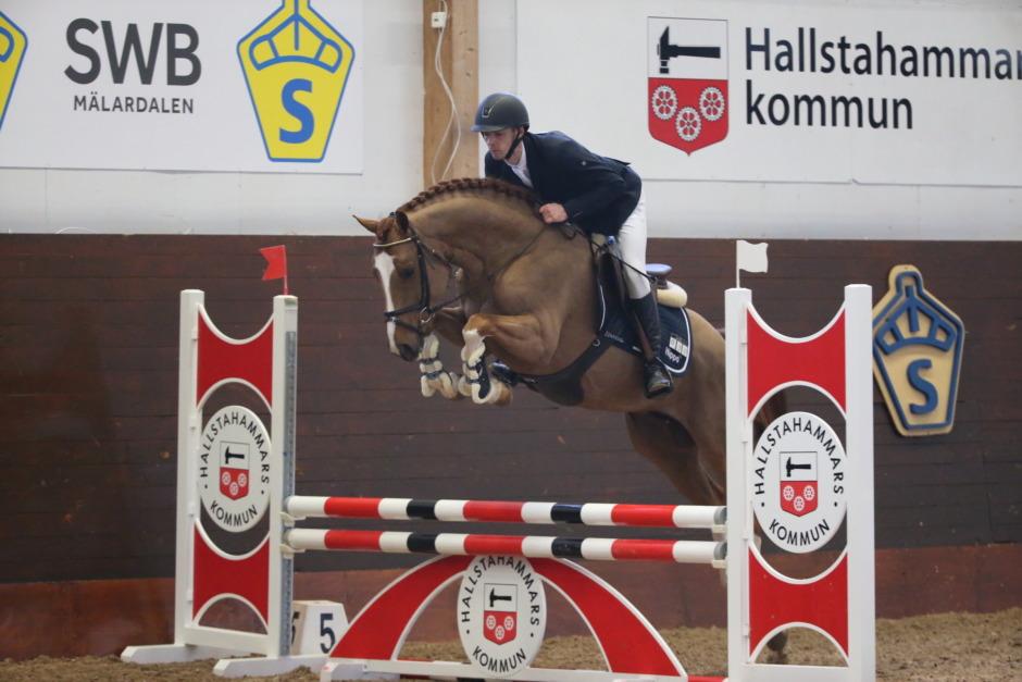 SWB-häst till ännu en världsryttare