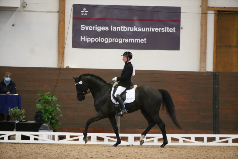 Maderik Ems A74q0509