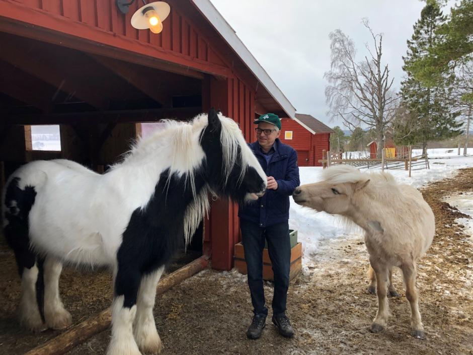 Inget gensvar från regeringen om hästföretagares villkor