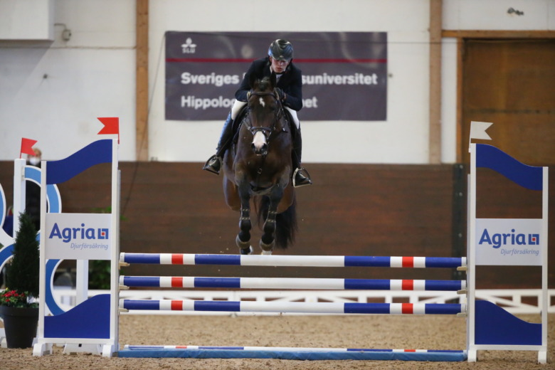 Zezar Hästak A74q0051