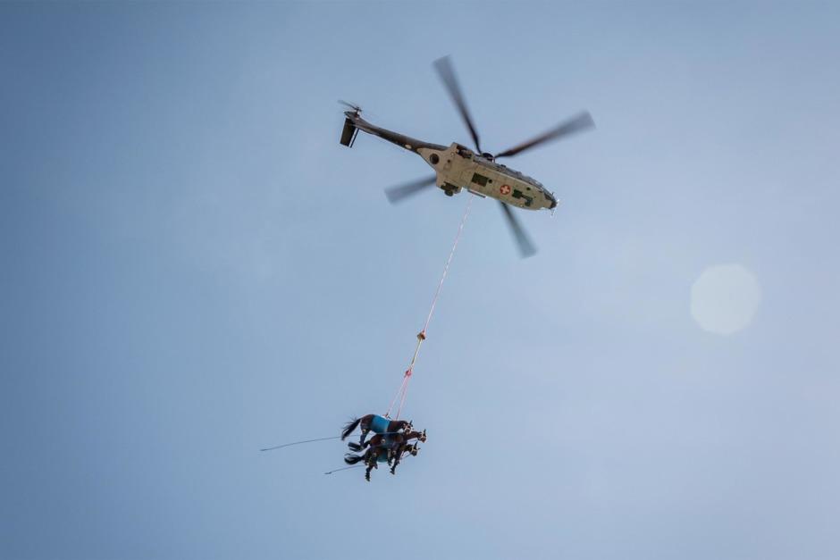 Helikopterräddning av hästar vid kris