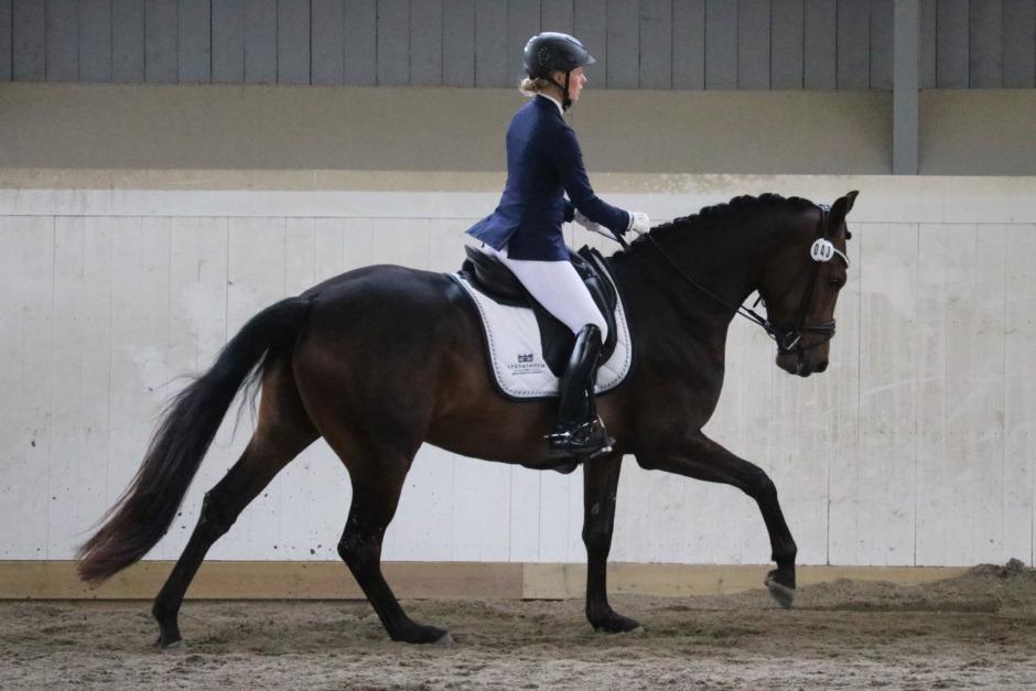 Förhoppningsvis en ny mästerskapshäst