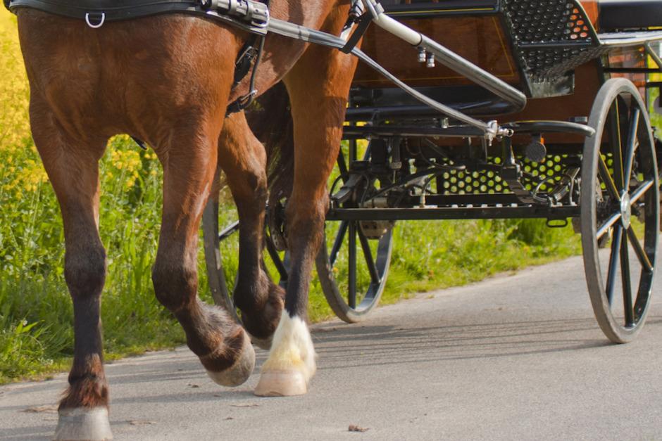 Kusk död i olycka med hästvagn
