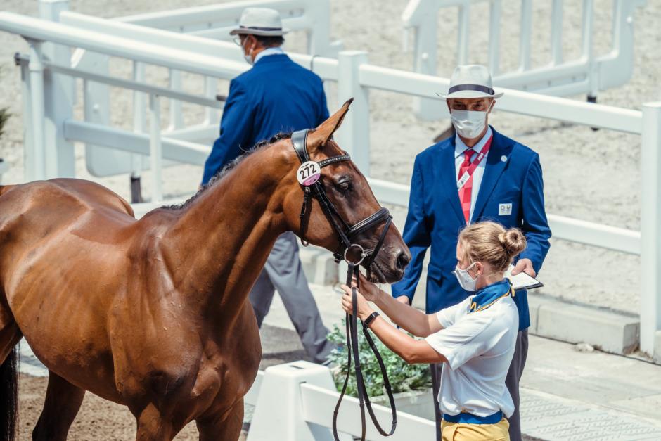 Svenska fälttävlanshästarna har fått grönt ljus i Tokyo