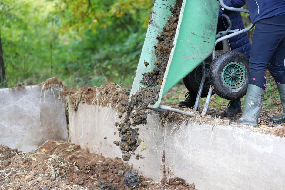 Gödselhantering granskas av kommunerna