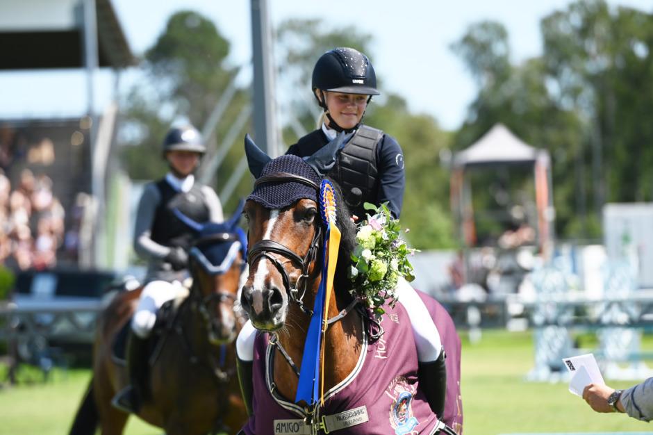Topptrion laddade utomlands inför ponnyernas GP i Falsterbo