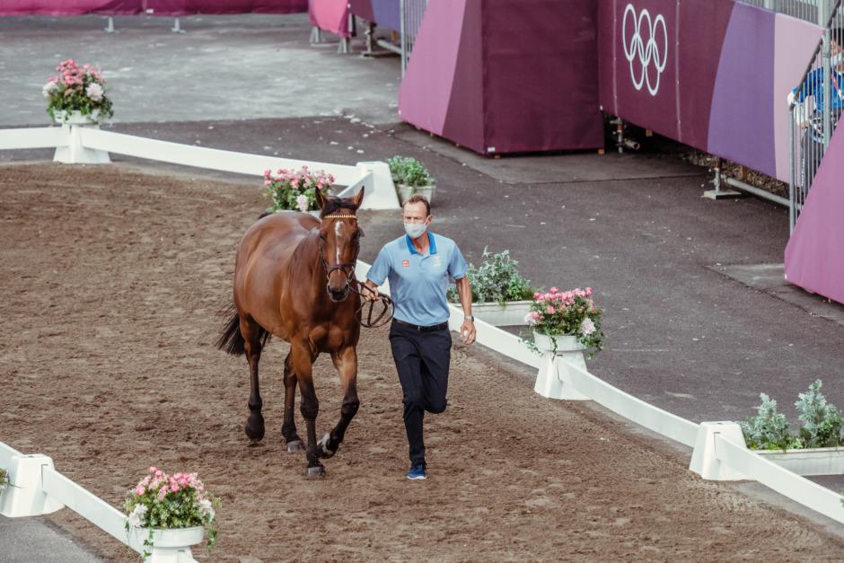 Tummen upp för de svenska hästarna