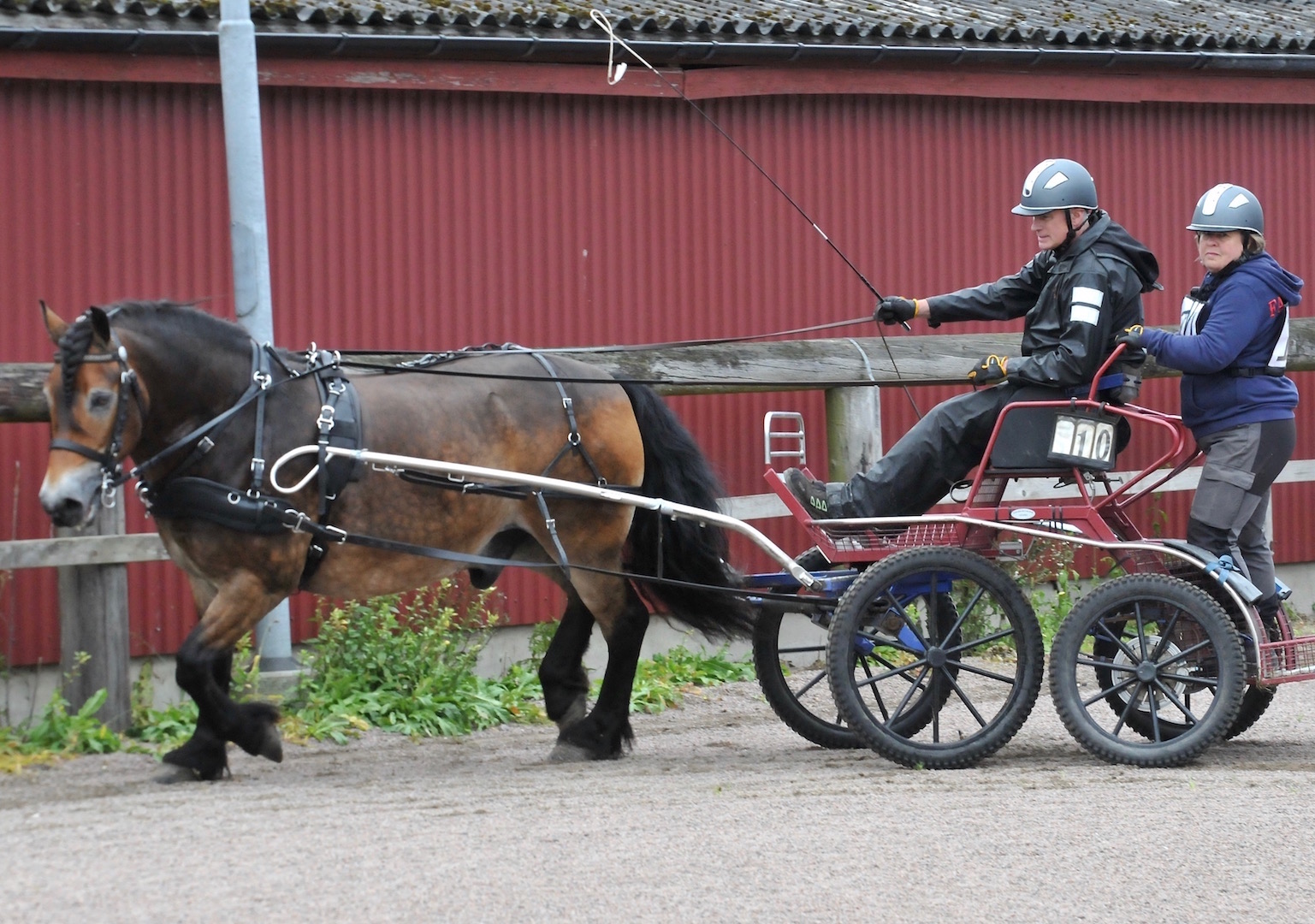 6. Ebbe Toresson.