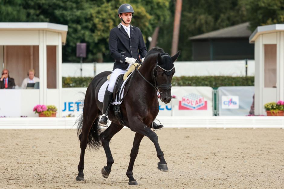 Ingen SWB-häst till 6-årsfinalen på UVM