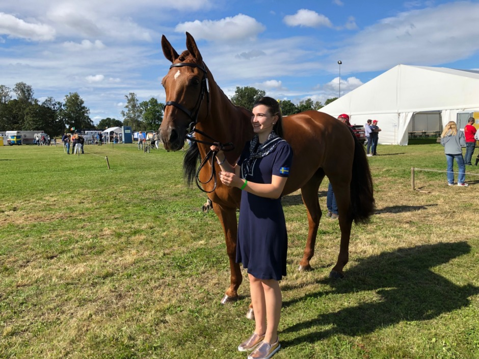 Kolla klippet: Hästbesiktningen i Segersjö avklarad
