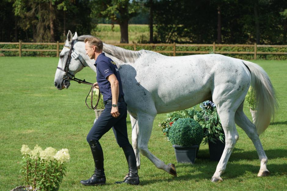 Hästbesiktningen på EM klar – så här gick det